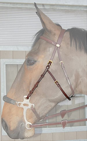 Dy'on Hackamore Backenstück English Collection