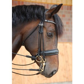 Dy'on Kandare mit schwedischem Reithalfter Dressage Collection