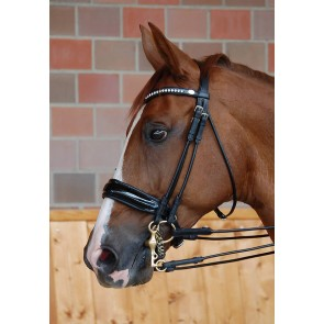 Dy'on Kandare mit schwedischem Reithalfter aus Lackleder Dressage Collection